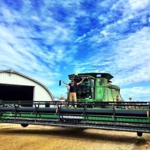 Pre Harvest Jitters